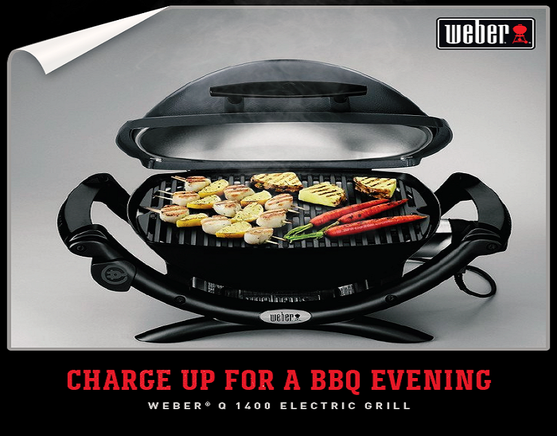 13aae0ba5ed52c3539bbc4fe3578c347 - How To Get Charcoal Flavor On An Electric Grill