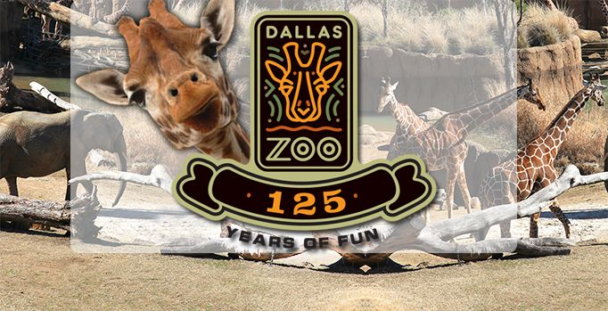 Pin By Local Resident Realty On Texas Dallas Zoo Zoo Dallas