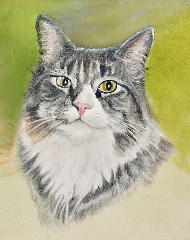 Tabby Cat Portrait Print Tabby Cat Print Tabby Cat Art Cat Art Cat Art Print Cat Watercolor Colored Pencil Painting Watercolor Cat Cat Art Cat Art Print