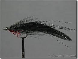 Image result for black deceiver fly