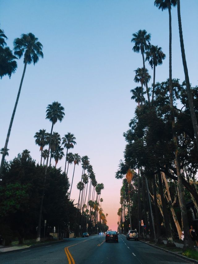 Pin by Kaden Troyna on S U M M E R Los angeles travel
