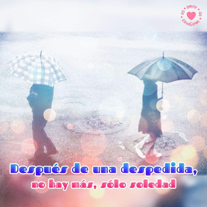 Imagen De Separacion De Pareja Con Frase Imagenes De Despedida