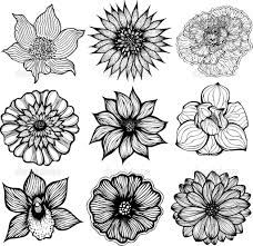 Flowers Like The Shading A Lot Flower Drawing Hand Drawn Flowers How To Draw Hands