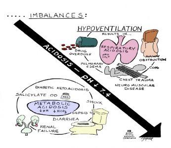 zuur-base evenwicht
