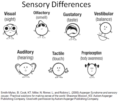 Talking Sense What Sensory Processing >> Sensory Processing The Visual System Let S Talk About The Sense