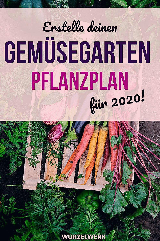 Photo of Wie du einen Anbauplan für deinen Gemüsegarten erstellst + Beispielplan – Wurzelwerk