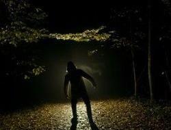 Real Werewolf Sightings 2014 | www.pixshark.com - Images ...