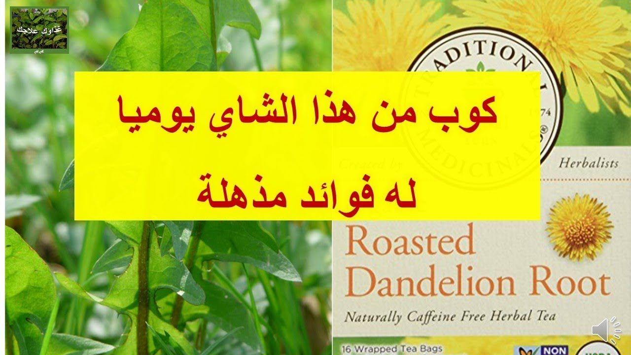 فوائد وكيفية استعمال الهندباء أو العلت القسم الثاني Health Benefits Of Roasted Dandelion Root Dandelion Benefits Caffeine Free