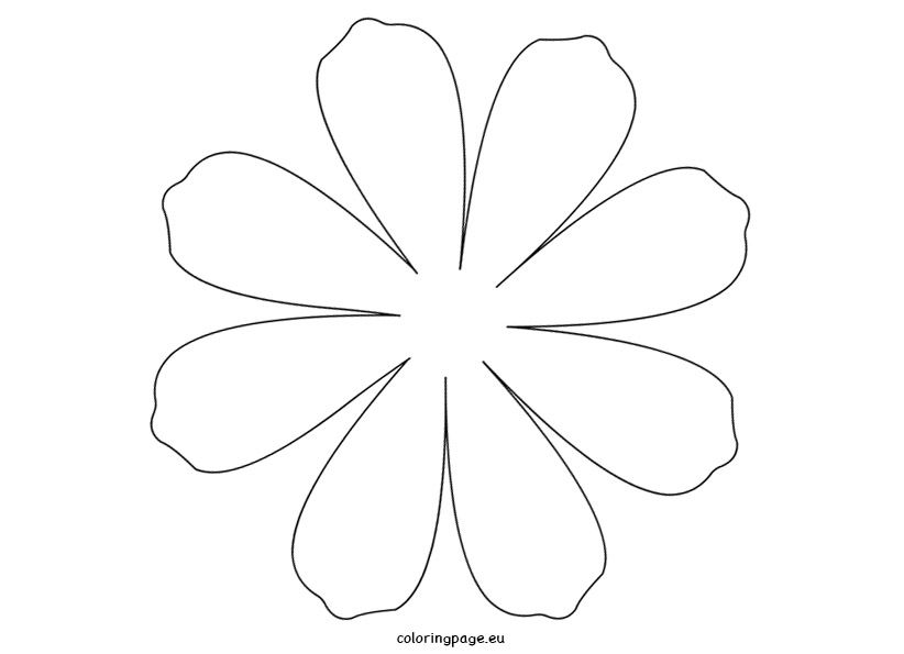 Large Daisy Petal Template | Printable Flower Daisy 8 petal ...
