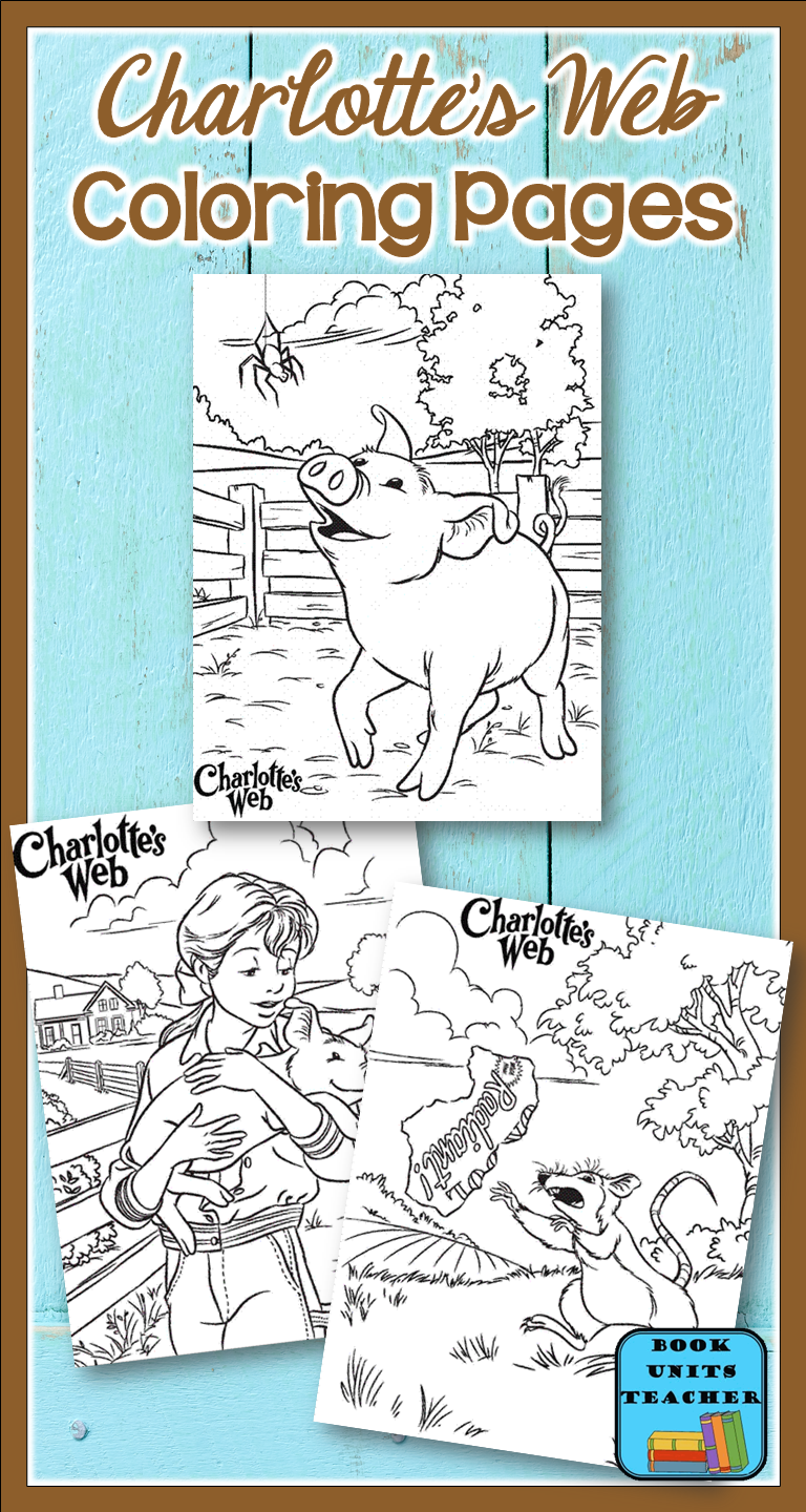Charlotte\'s Web Activities | Charlottes web, Web activity and Activities