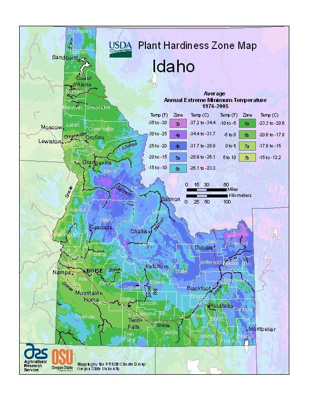 usda plant hardiness zone map idaho
