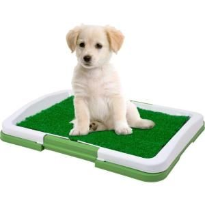 PAW, Puppy Potty Trainer The Indoor Restroom for Pets, 80-ST403 at The Home Depot - Mobile