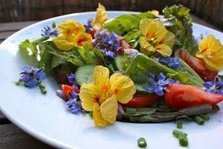 salad from the garden with blossoms