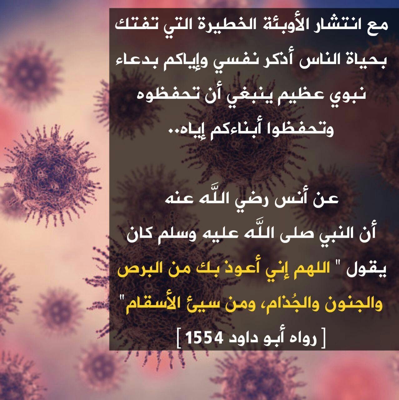 Pin By زهرة الياسمين On دعاء Duaa Flowers Poster Plants
