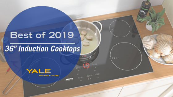 7 Best 36 Inch Induction Cooktops For