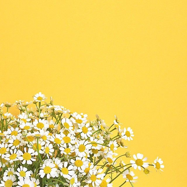 Just so many smiles Yellow aesthetic pastel