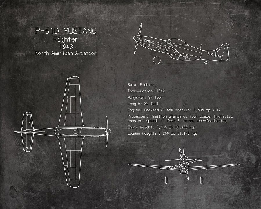 P 51 mustang blueprint art print sara harrisg 900720 art p 51 mustang blueprint art print sara harrisg 900720 art pinterest malvernweather Gallery