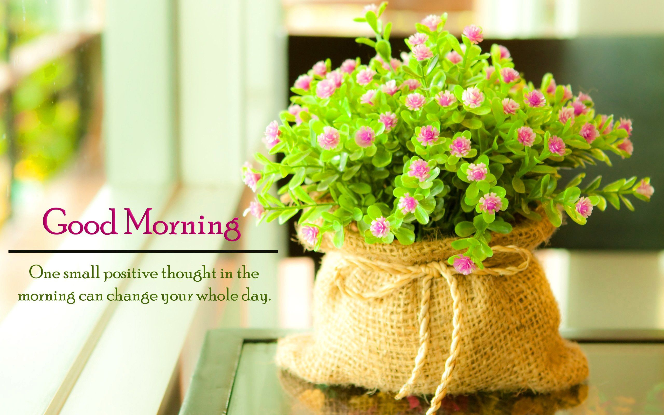 Good Morning Quotes Flowers hd Flower wallpaper