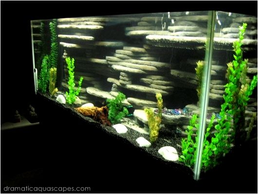 Get inspired with these 9 diy aquarium backgrounds for Fish tank background ideas