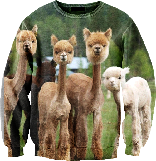 Llama♥ Clothes :D