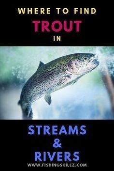 Photo of River Fishing Tips Fly Fishing