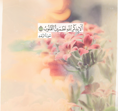 Quran 13:28 - Thunder Indeed, only in the remembrance of Allah is ...