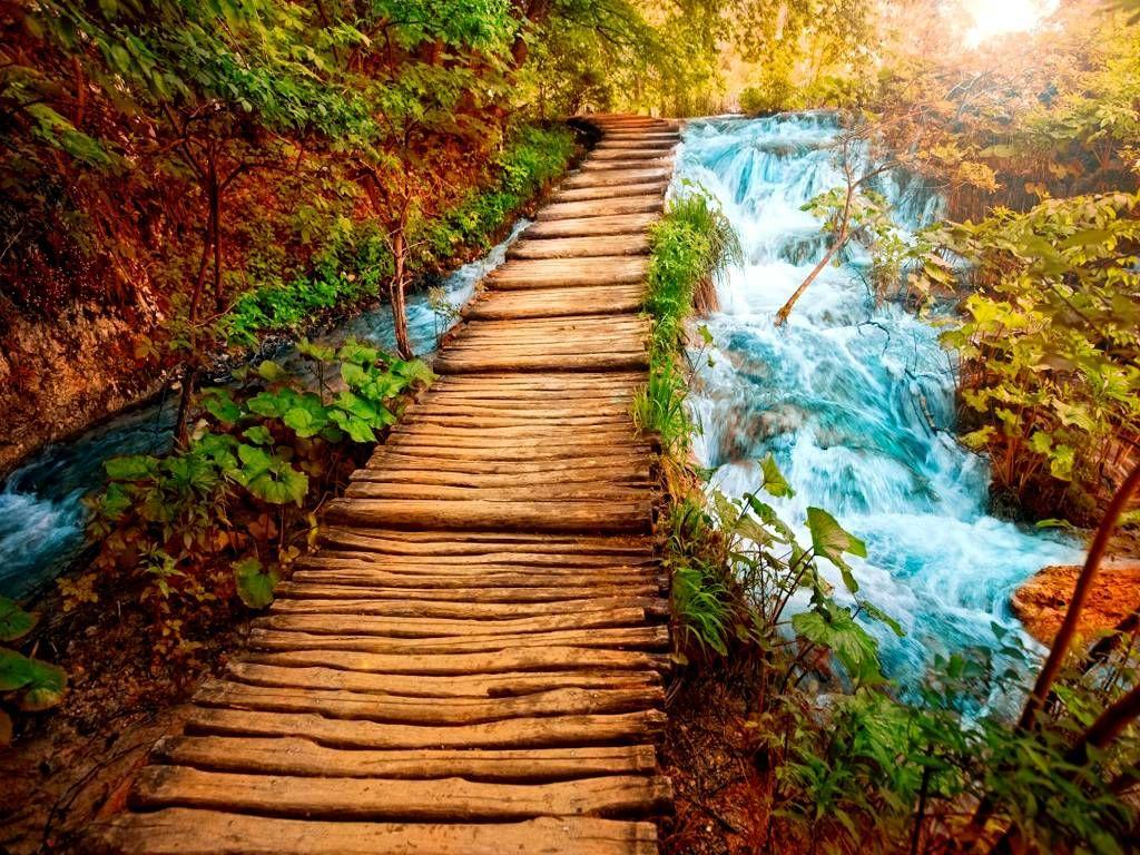 Free download nature hd wallpaper pack wallpapers for desktop