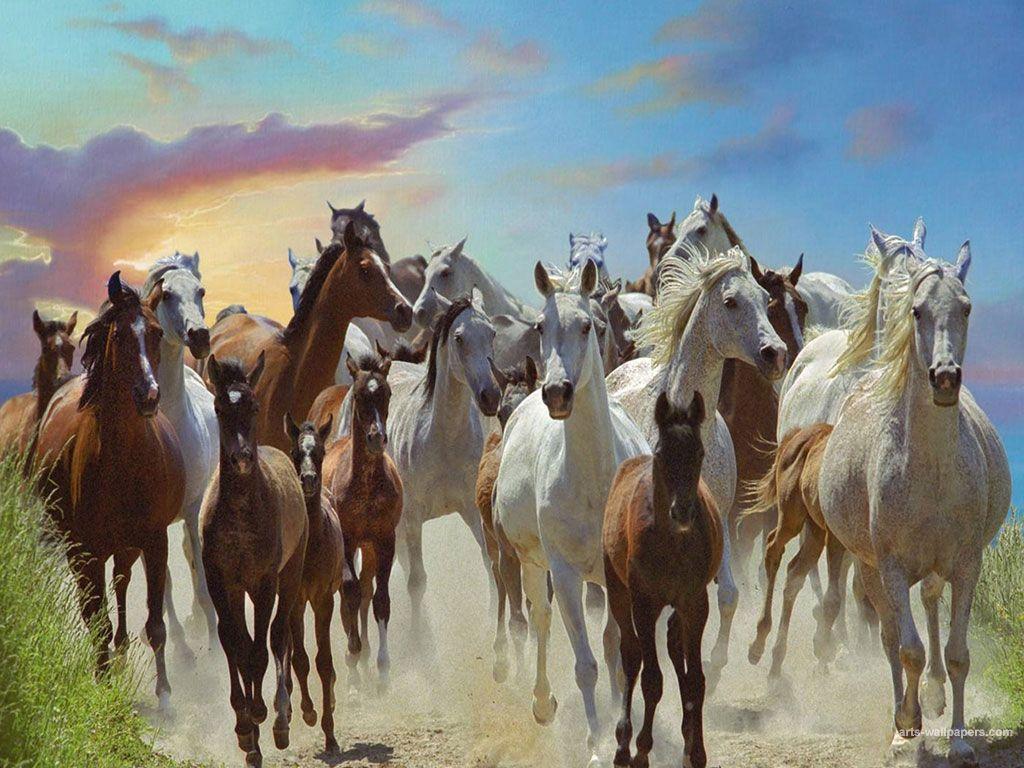 Popular Wallpaper Horse Art - 13b5f39a4e0dcbac6591ad52855e1076  Image_8310098.jpg