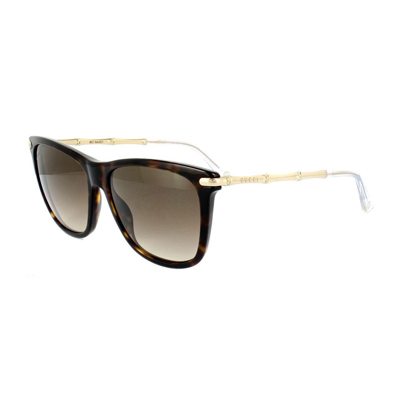 Gold Brown Havana Tortoiseshell Sunglasses Gucci tSgjw