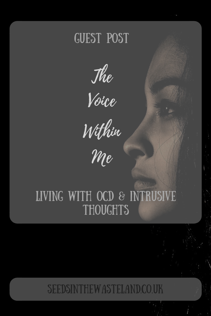 Guest post: The Voice Within Me | BLOGGER CLAN: ALL NICHES | Mental