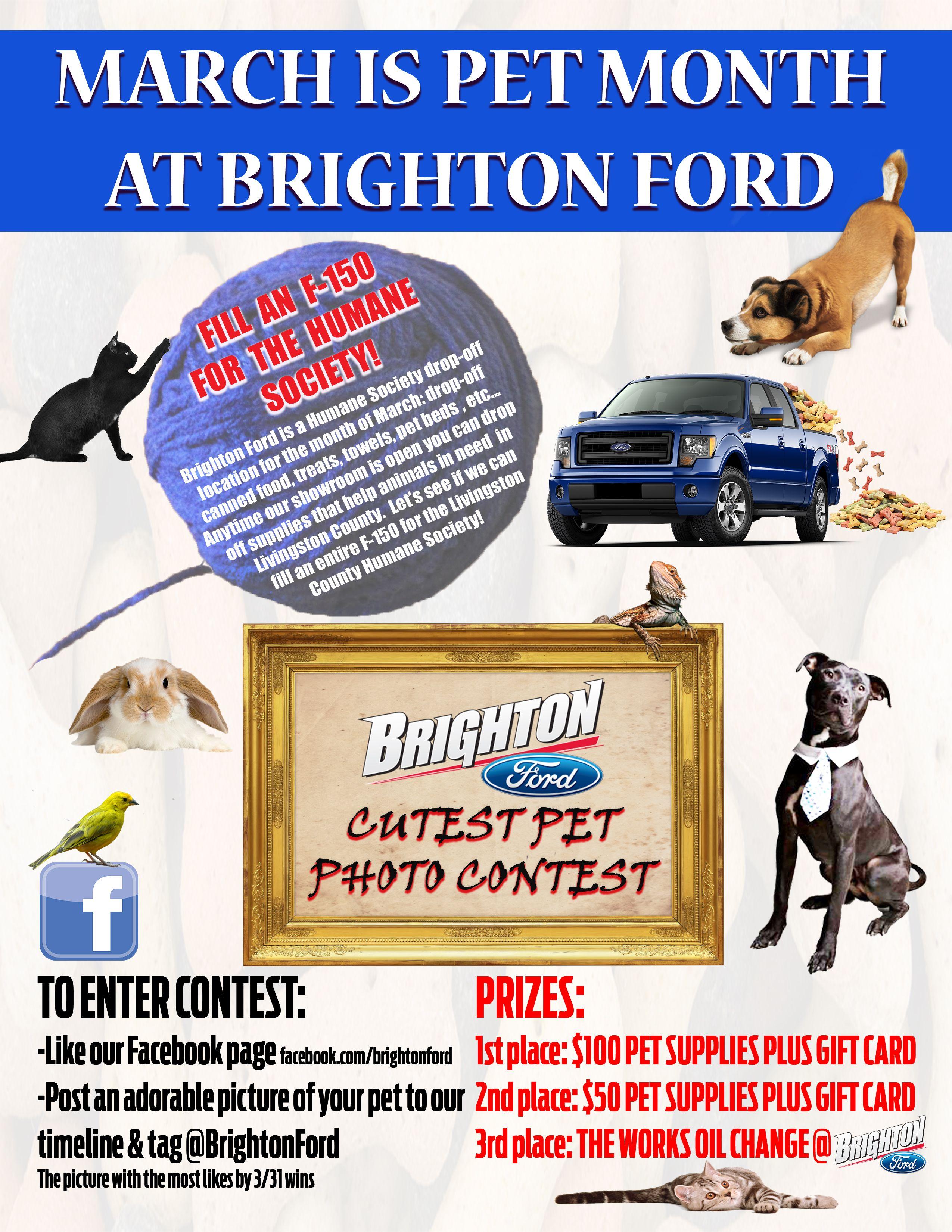 Pet Month At Brighton Ford Image By Brighton Ford Brighton Michigan