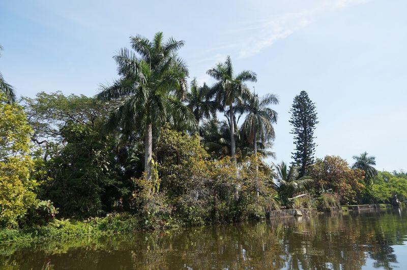 Little river  - Miami