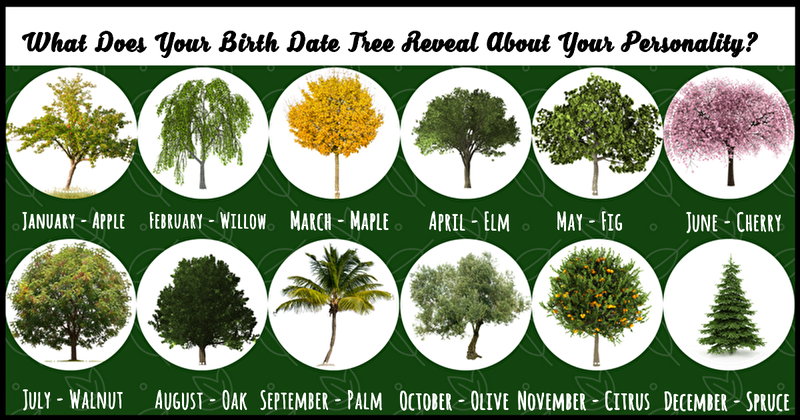 We all have a birth month tree, but did you know it