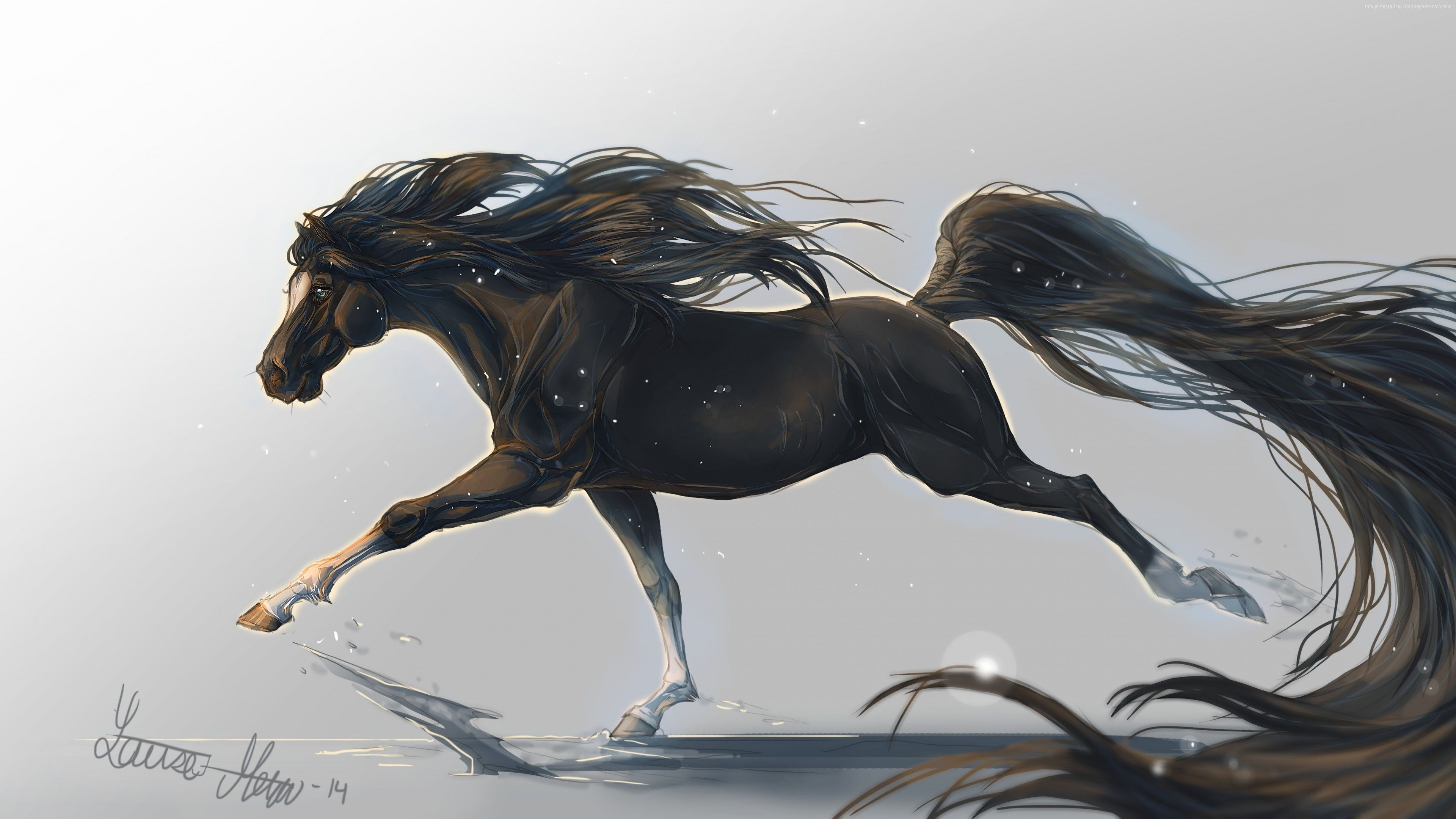 Wallpaper Horse Hooves 5k 4k Wallpaper Mane Galloping Black White Background Art Animals Horse Wallpaper Horses Fantasy Horses