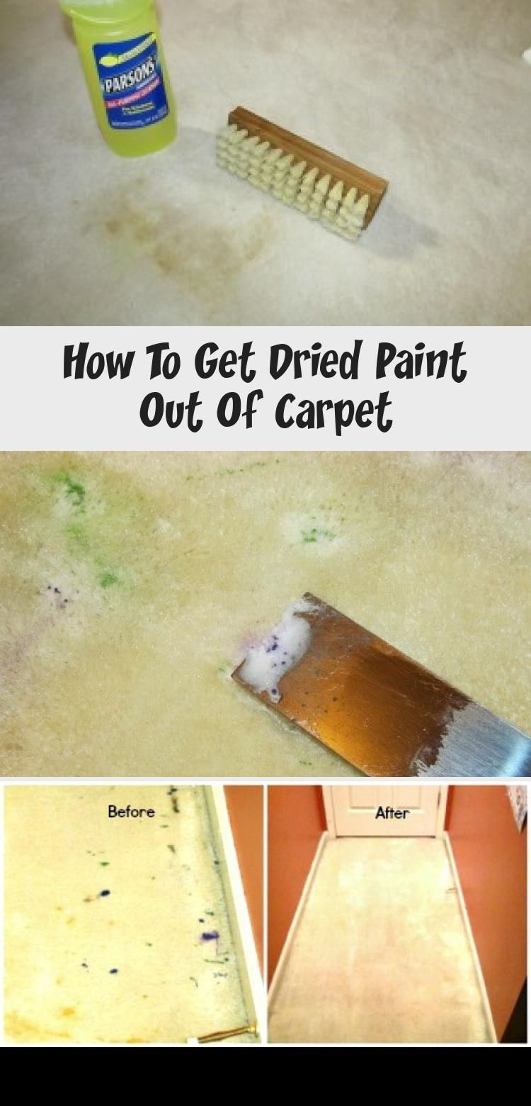 How To Get Dried Paint Out Of In 2020 How To Clean Carpet