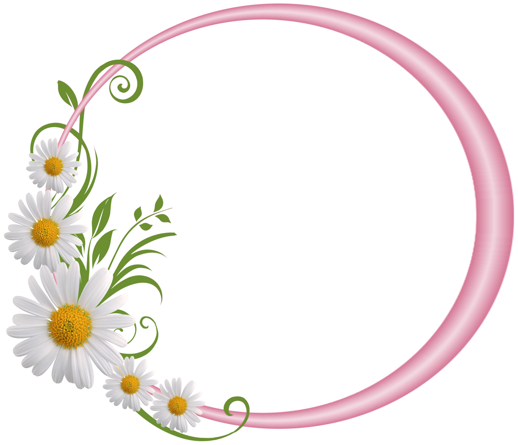 pink round frame with daisies