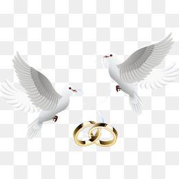 Dove Inlay Ring Wedding Silhouette Wedding Art Tattoo Wedding Rings