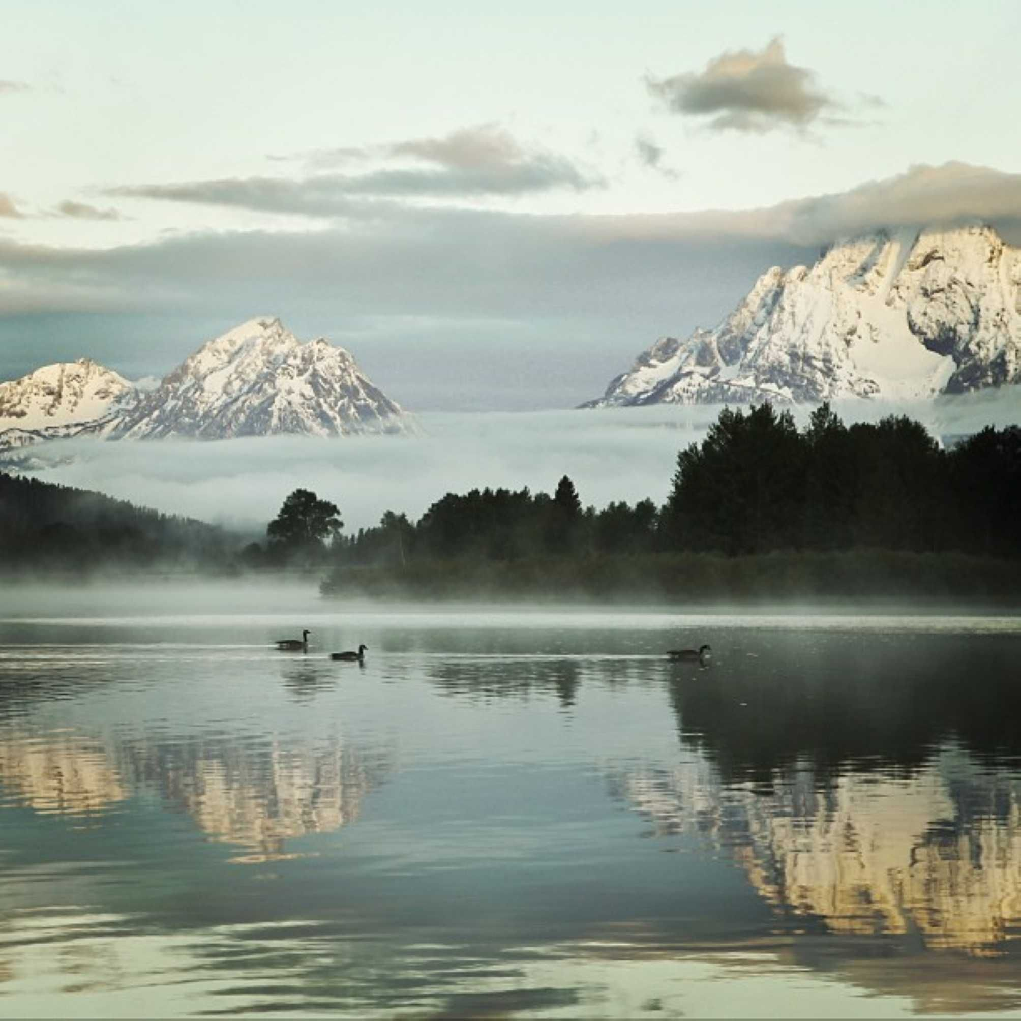 Early morning and waiting for the #sunrise at Oxbow Bend in Grand Teton National Park. Photo: Jantina Tuthill #OxbowBend #GrandTetons #nationalpark #Wyoming #lakes #ducks #mountains #landscape #nature #morning #photography #photooftheday #bestoftheday #instagood #instacool #tetons  Credit U.S. Dept. of Interior