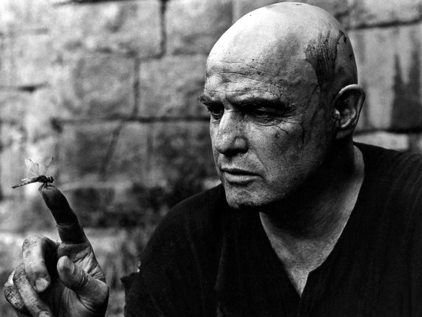 Image result for Apocalypse Now. The character of Colonel Kurtz dragonfly