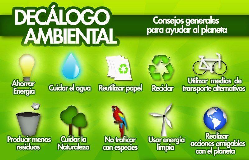 Decalogo Ambiental El Mundo De Navita Ambientales Cuidado Del