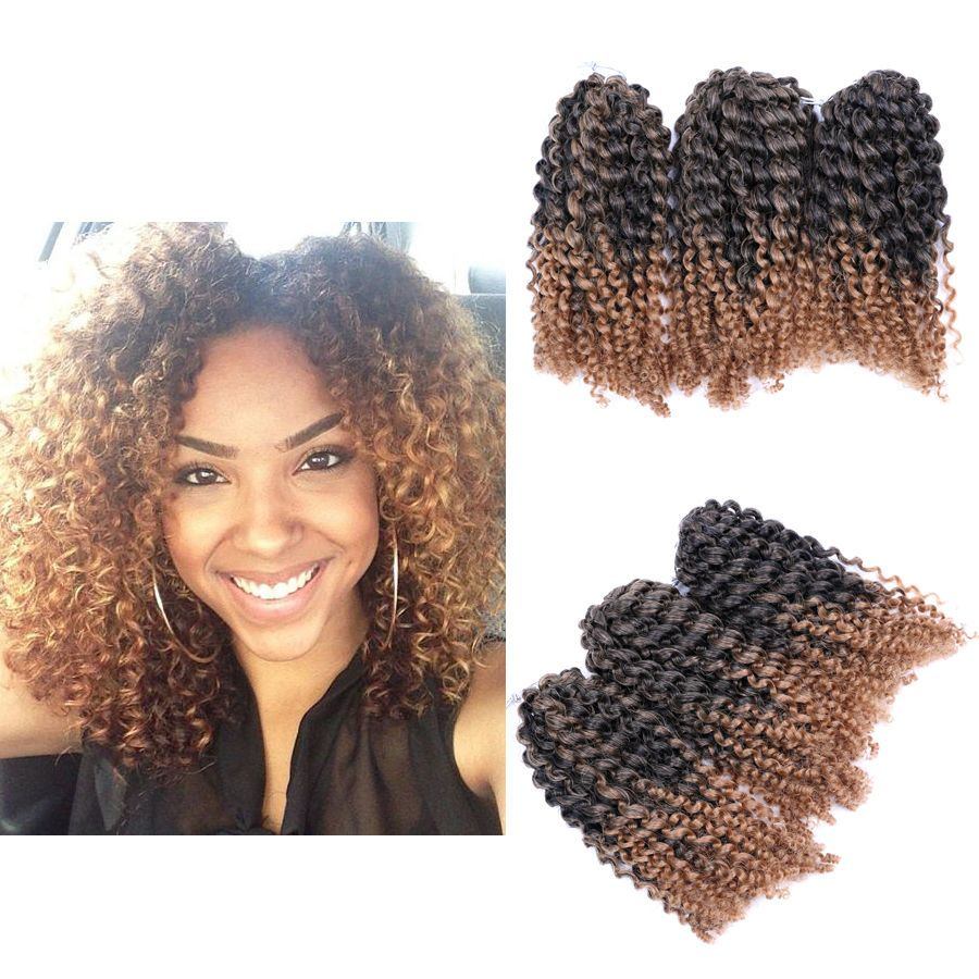 8 Ombre Afro Kinky Curly Crochet Braids Marlybob Braid Hair