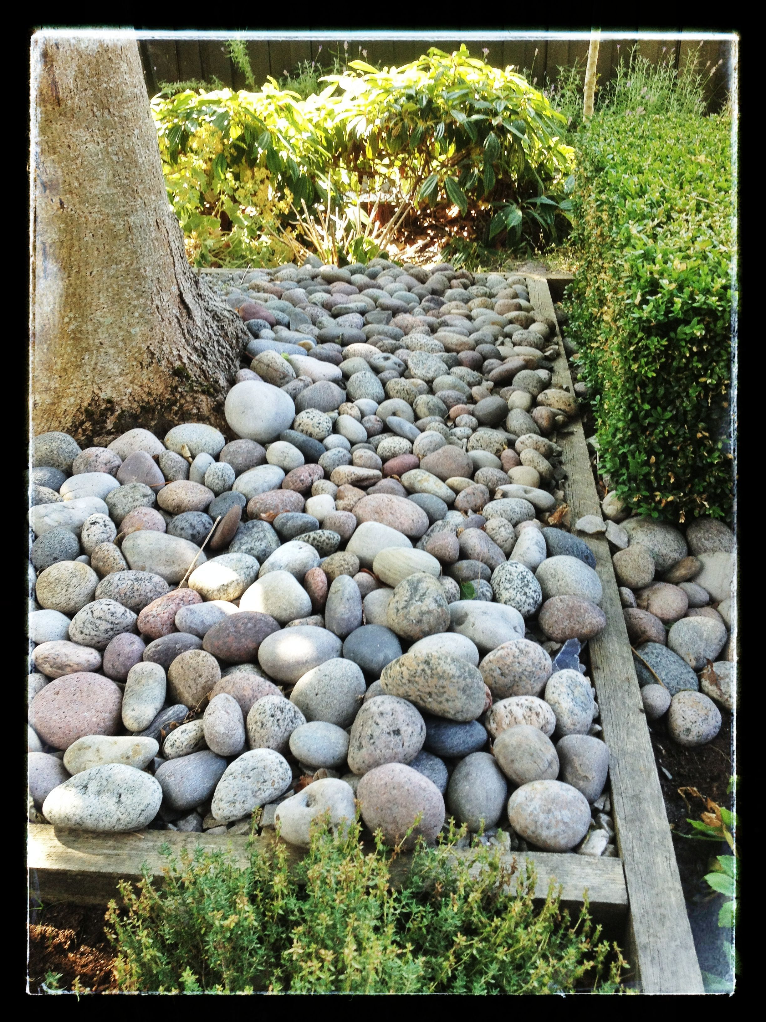 Sten o rabattkant trädgård pinterest dream garden and gardens