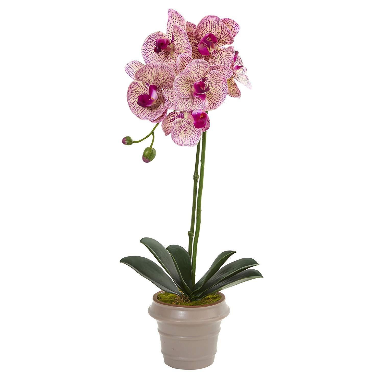 Decorative Natural Looking Artificial Beauty Vanda Black Hexagon Vase Silk Plant