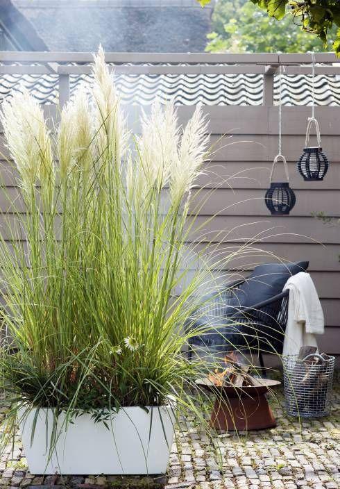 Gartengestaltung - 11 einfache Ideen zum nachahmen | homify #apartmentpatiogardens