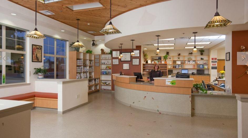 17+ Boca delray animal hospital ideas