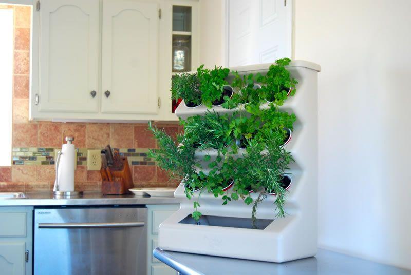 Indoor home vertical garden design ideas with aria tabletop by evo indoor home vertical garden design ideas with aria tabletop by evo organic workwithnaturefo