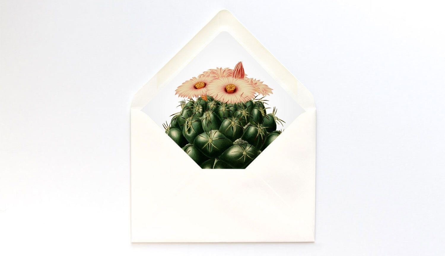 A Envelope Liner Template  Cactus Bloom Euro Flap  Diy