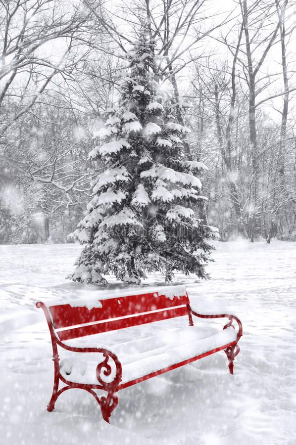 Winter scene, background. Black and white with red element. Winter scene, backgr , #affiliate, #background, #scene, #Winter, #Black, #element #ad