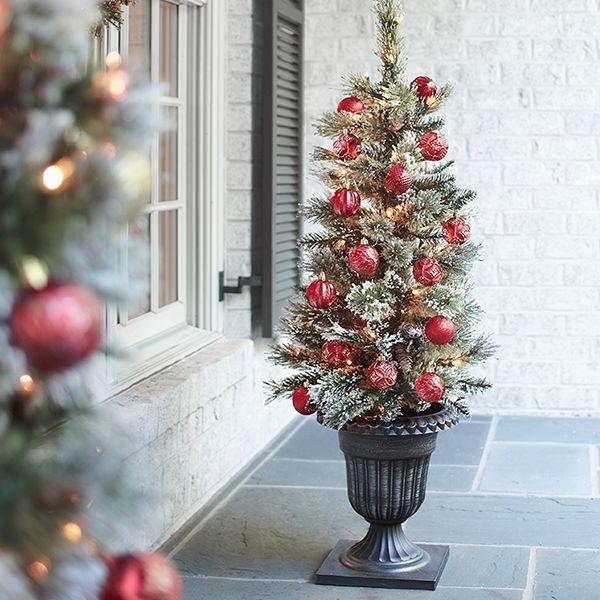 Martha Stewart Living™ 4 Ft Prelit Potted Sparkling Pine