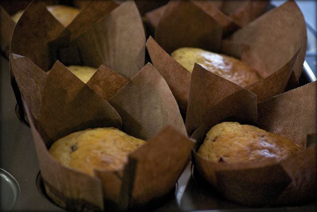 Mary Berrys Chocolate Chip Muffins I Made With White Choc